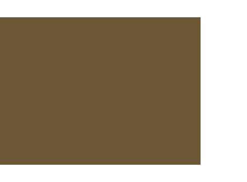 Studio Miolift